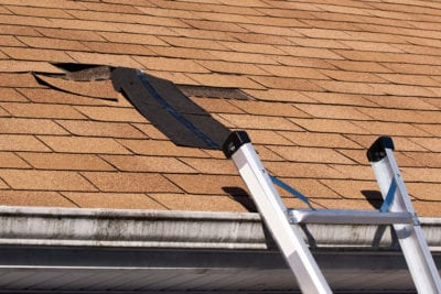 How To Extend the Lifespan of Your Asphalt Shingle Roof