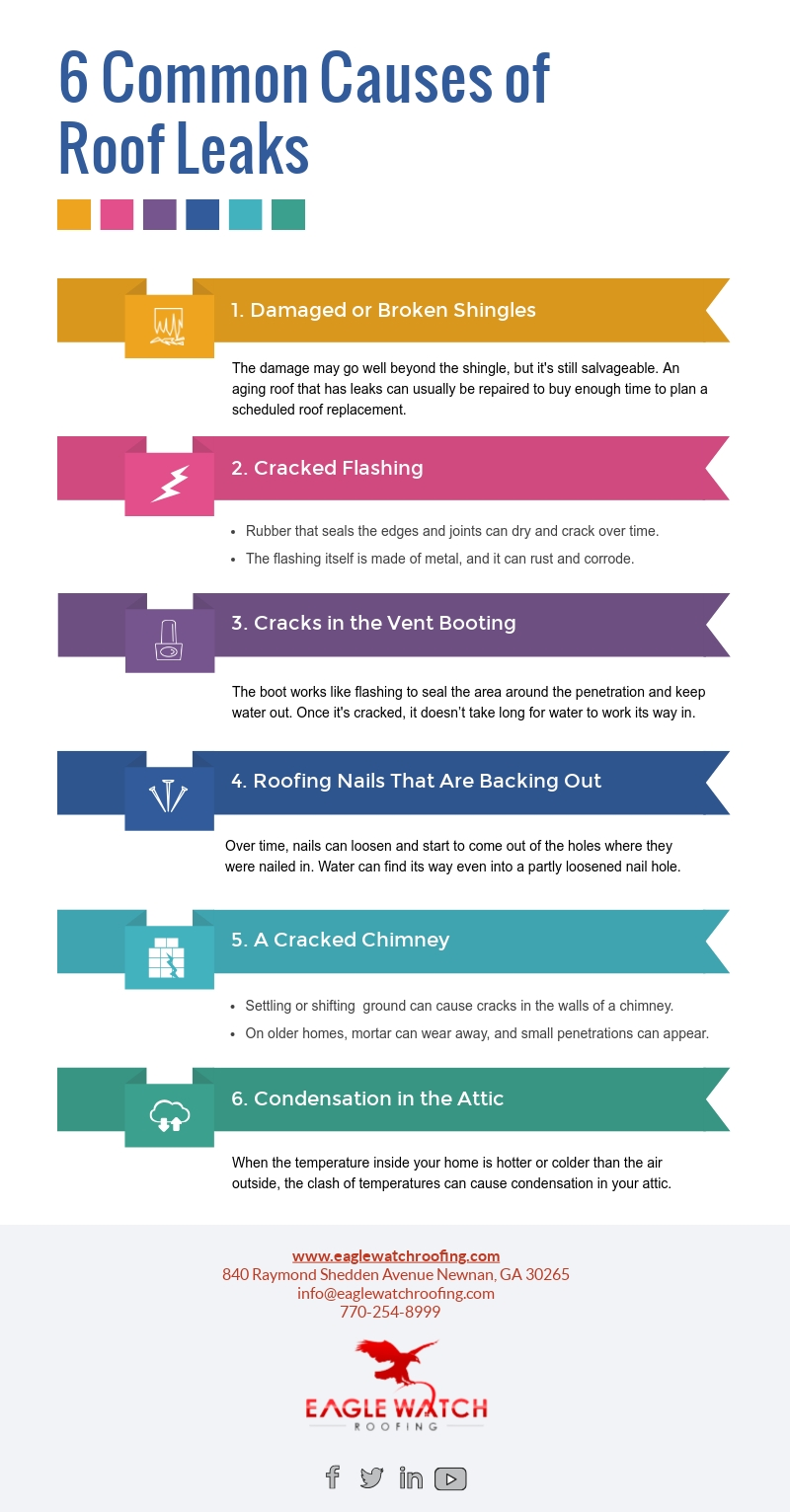 6 Common Causes of Roof Leaks [infographic]