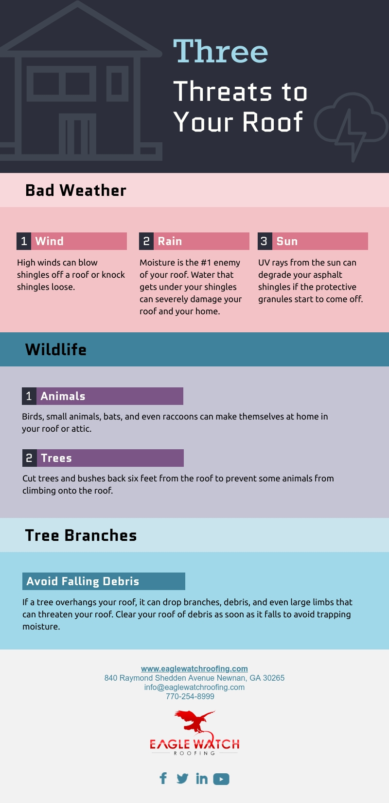 Three Threats to Your Roof [infographic]