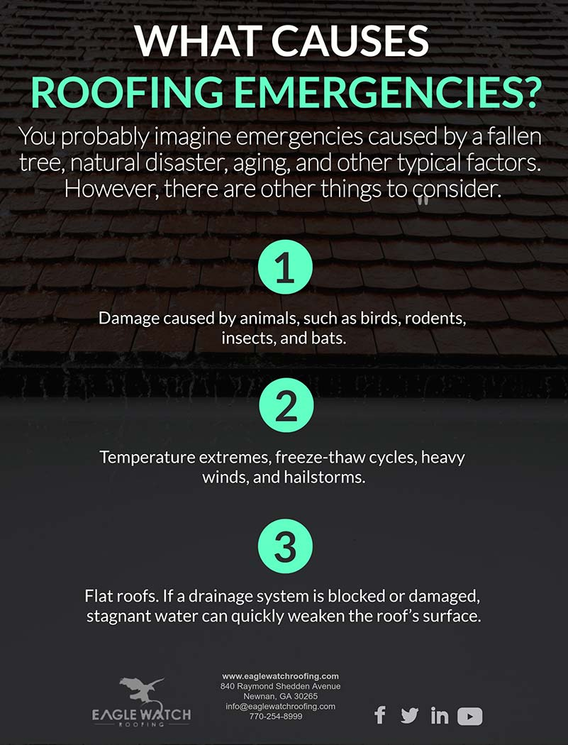 Causes and Dangers of Roofing Emergencies [infographic]